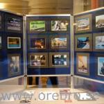 FK Focus utställning i Rådhusfönstret
