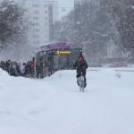 Plac 8. Vinterresor-Lasse Hallmén. Vinterresor Verkligen. Man lider med cyklisten En ogästvänlig dag kompositionsmässigt inte en höjdare men budskapet når fram .Så här har Umeå sett ut en längre tid, så vi kände igen oss.
