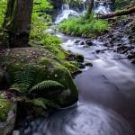 5. RöttleMats Grimfoot  Åter en bild där vattnet vackert slingrar sig mot betraktaren i behaglig färgskala  inom  tonerna grönt