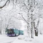 4.Mellringebussen. Börje Lindström Underbart, bara underbart! Grafisk med en färgklick. Trevlig kontrast med det vita o lila.